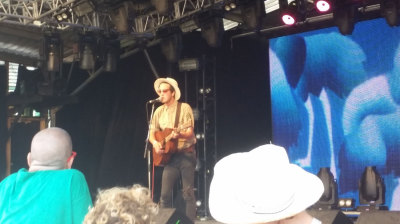 Marlon Williams at Meredith Music Festival 2014